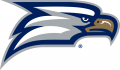 Georgia Southern Eagles 2010-Pres Secondary Logo iron on sticker
