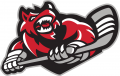 Huntsville Havoc 2016 17-Pres Secondary Logo decal sticker