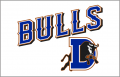 Durham Bulls 2013-Pres Jersey Logo decal sticker