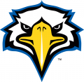 Morehead State Eagles 2005-Pres Secondary Logo 02 iron on sticker
