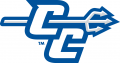 Central Connecticut Blue Devils 2011-Pres Alternate Logo 03 iron on sticker