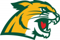 Northern Michigan Wildcats 2016-Pres Secondary Logo 01 iron on sticker