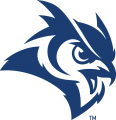 Rice Owls 2017-Pres Secondary Logo iron on sticker