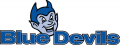 Central Connecticut Blue Devils 1994-2010 Alternate Logo iron on sticker