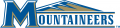 Mount St. Marys Mountaineers 2004-Pres Alternate Logo 02 iron on sticker