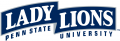 Penn State Nittany Lions 2001-2004 Wordmark Logo 01 decal sticker