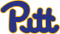 Pittsburgh Panthers 1973-1996 Wordmark Logo decal sticker