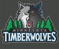 Minnesota Timberwolves Plastic Effect Logo decal sticker