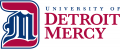 Detroit Titans 2016-Pres Alternate Logo 01 iron on sticker