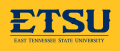ETSU Buccaneers 2014-Pres Wordmark Logo13 iron on sticker