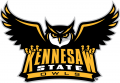 Kennesaw State Owls 2012-Pres Primary Logo decal sticker
