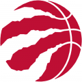 Toronto Raptors 2015-16 Alternate Logo iron on sticker