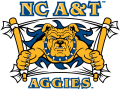 North Carolina A&T Aggies 2006-Pres Secondary Logo 02 iron on sticker