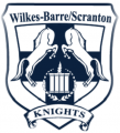 Wilkes-BarreScranton Knights 2015 16-Pres Primary Logo decal sticker