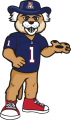 Arizona Wildcats 2013-Pres Mascot Logo 02 decal sticker