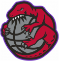 Toronto Raptors 1995-1998 Alternate Logo iron on sticker