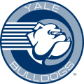 Yale Bulldogs 1998-Pres Alternate Logo decal sticker