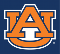 Auburn Tigers 1991-Pres Alternate Logo iron on sticker