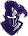 Furman Paladins 2013-Pres Alternate Logo decal sticker