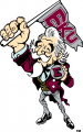 Eastern Kentucky Colonels 2004-Pres Mascot Logo iron on sticker