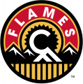 Calgary Flames 2013 14-2015 16 Alternate Logo decal sticker