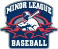 Minor League Baseball 1999-2007 Primary Logo decal sticker