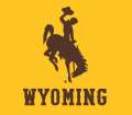 Wyoming Cowboys 2013-Pres Alternate Logo 02 iron on sticker