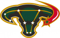 Dallas Stars 2003 04-2005 06 Alternate Logo decal sticker