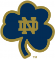 Notre Dame Fighting Irish 1994-Pres Alternate Logo 15 iron on sticker