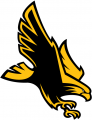Southern Miss Golden Eagles 2003-Pres Alternate Logo decal sticker
