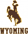 Wyoming Cowboys 2013-Pres Alternate Logo iron on sticker