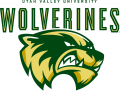 Utah Valley Wolverines 2008-2011 Primary Logo iron on sticker
