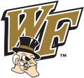 Wake Forest Demon Deacons 1993-2006 Secondary Logo iron on sticker