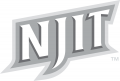NJIT Highlanders 2006-Pres Wordmark Logo 20 iron on sticker