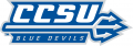 Central Connecticut Blue Devils 2011-Pres Wordmark Logo 02 iron on sticker