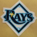 Tampa Bay Rays Embroidery logo
